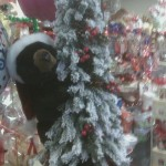 Christmas Bear on Flocked Tree With Lights