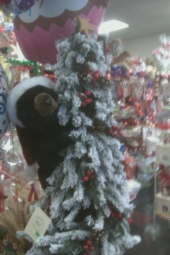 Christmas Black Bear on Flocked Tree